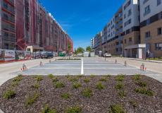 Osiedle Lokum Victoria - etap IIa i etap I, nasadzenia  zieleni na terenie parkingu